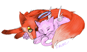 Fox and the Cat by Cherrysamachan