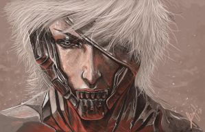 Raiden MS paint by wizyakuza
