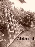 Ladder of Summer by Oinkment