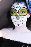 Day of the dead 4 by SheIsNirvana