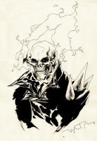 Ghost Rider by fwatanabe