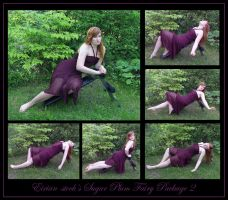 Sugar Plum Fairy Package II by Eirian-stock