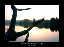 Just a stick on the water by lmsmith