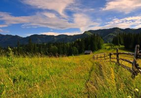 Landscape from Bukovina by lica20