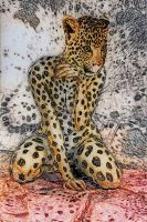 Lady leopardo by hiram67