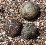 Rocks and sand by kayaksailor