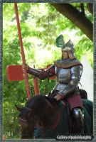 Gallery of polish knights 1of5 by Marqoni