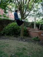 Zade - Tree Swinging III by Zade-uk