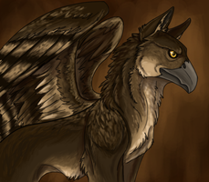 A griffin by DesertDruid