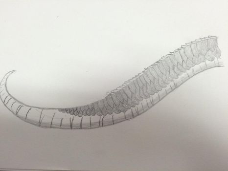 1st attempt at a NightWing tail by VortexSniper