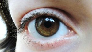 light brown eye 3 by EvilHateYouAllStock