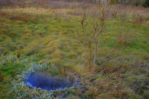 Hole in the Ground by adamsik