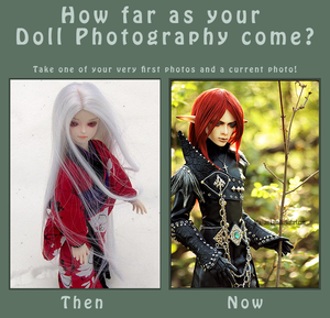 BJD Photography Meme by Aoi-kajin