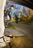 Wallride III by Ghostsk8ter