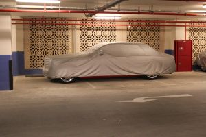 What's Under the Cover? by ramyk