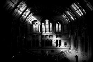 Natural history museum London by LetMeBePhotography