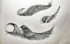 wing designs by Noodough