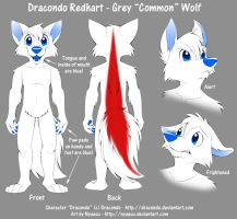 Dracondo Reference Sheet by Nyaasu
