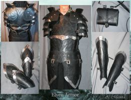 Elven Armor (1) by Shattan