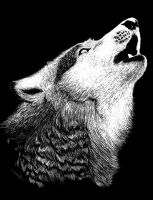 Scratch Board - Wolf by junkyard-angels