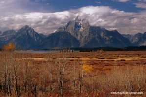 More Mount Moran by WildTurkey99