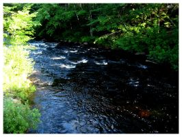 River in Maine I by Fallensbane