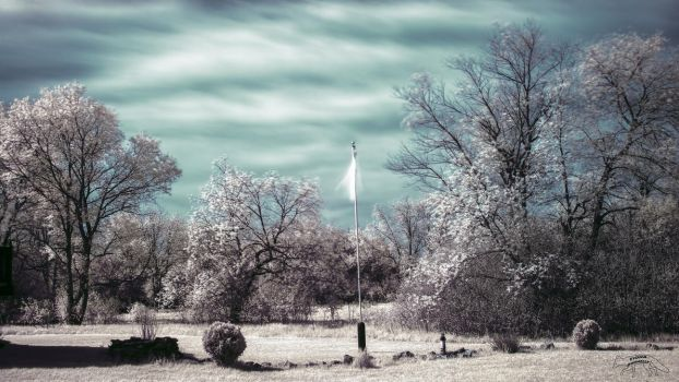 Capturing Infrared Light 1 by Nini1965