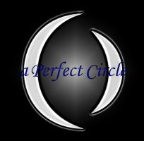 a Perfect Circle by flawpunk