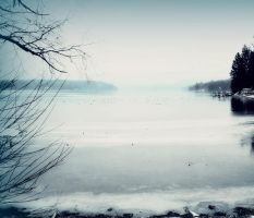 Cold December 2 by kvetched