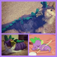 My Little Pony: Spikey Wikey! The Baby Dragon..Cat by lillybearbutt