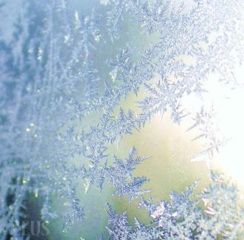 The Beauty of winter. by ZEUS1001
