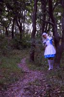 Alice In Wonderland by Sefora-san