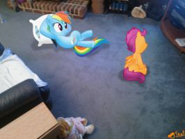 Dashie and Scootaloo watching MLP FIM on TV by OJhat
