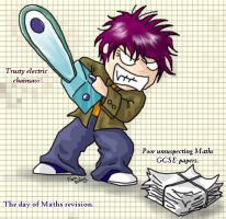 The day of Maths Revision by Ferntree