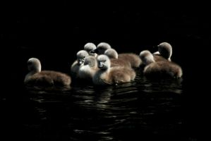 Sticking Together by EarthHart