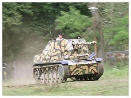 Marder on the rush by WormWoodTheStar