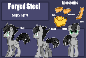 Forged Steel Reference sheet by MemeSquid