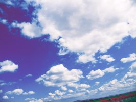 Country Sky by Sajo95