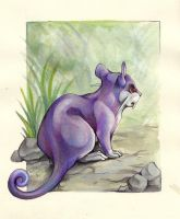 Rattata by DestroyedSteak