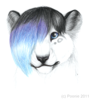 Isis the Snowleopard by PoonieFox