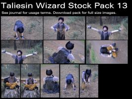 Taliesin Wizard Stock Pack 13 by Durkee341