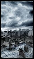 paris city's roof by klefer