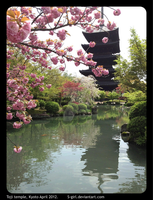 Toji Temple, Kyoto April 2012 by s-girl