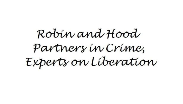 Robin and Hood: Partners in Crime by sachiko394