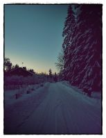 Swedish Winter Evening by hannayoung