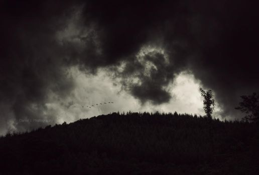 darkness descends by m3tzgore