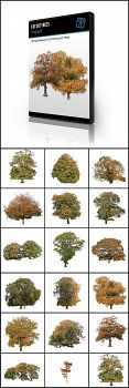 Cut out trees - autumn pack by kropped