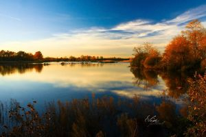 Autumn light by EliseJ-Photographie