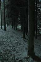 The Frozen Path to Winter by Vargathrone