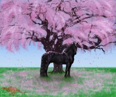 Black Horse and a Cherry Tree by KalinaPeregryph